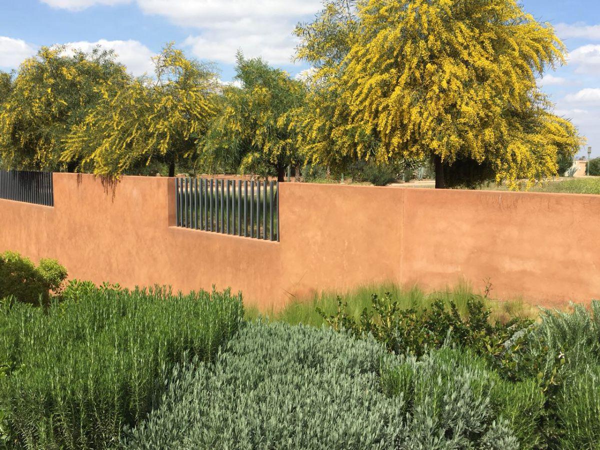 Maroco Paysages | paysagiste Marrakech maroc